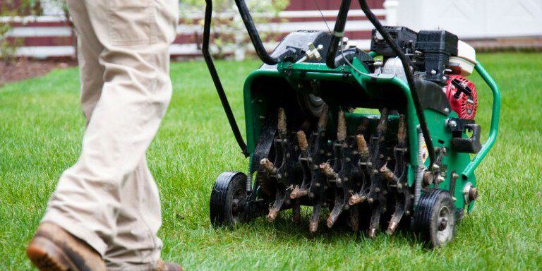 Lawn2-768x475